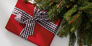 A gift wrapped with a bow under a pine tree.
